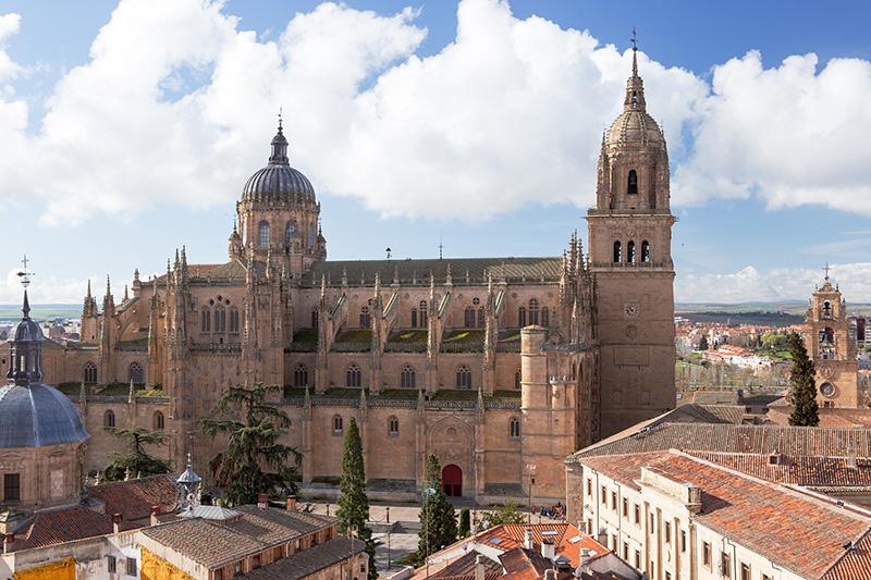 Katedrála Salamanca Španělsko