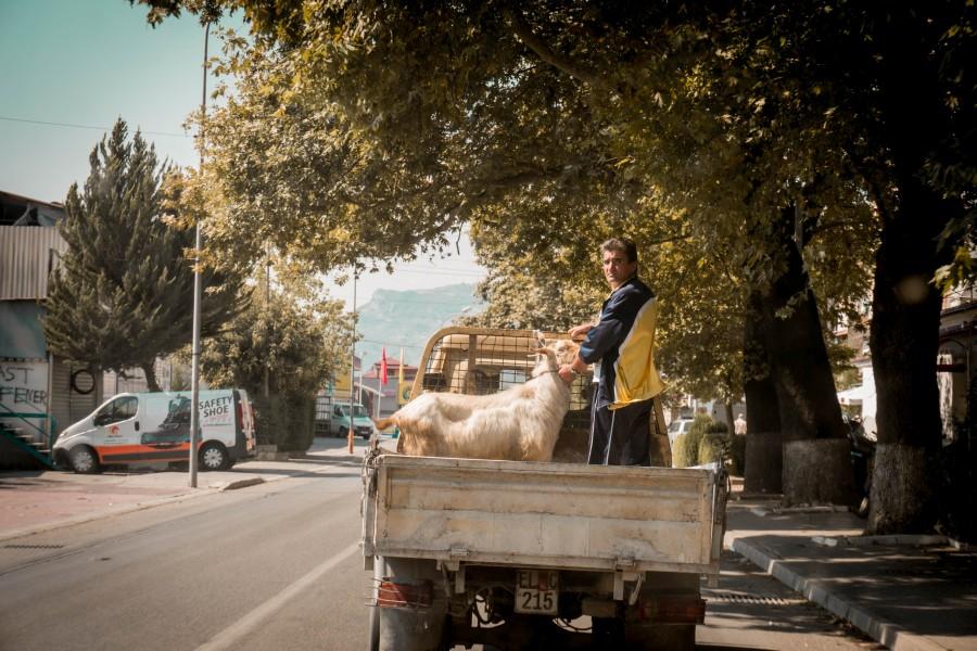 Cestování po Albánii